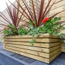 Grange Rectangular Contemporary Planter - Pressure Treated