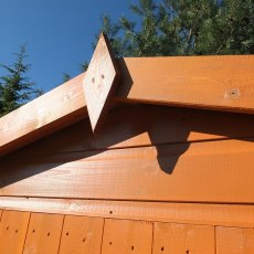 Shire Security Professional Shed - Roof close up