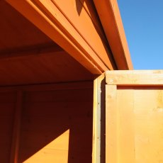 Shire Security Professional Shed - Close up with door open