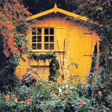 10 x 10 (2.99m x 2.99m) Shire Gold Security Cabin Summerhouse