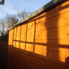 10x10 Shire Norfolk Professional Pent Shed - tongue and groove wall cladding