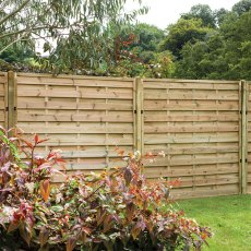 6ft High (1800mm) Forest Europa Plain Fence Panels - Pressure Treated