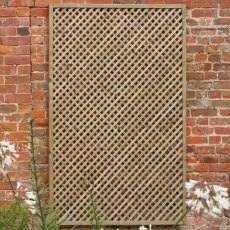 2ft High (600mm) Forest Wisley Framed Trellis - Pressure Treated