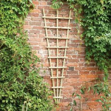 Forest Traditional Fan Trellis 180 x 60cm - Pressure treated