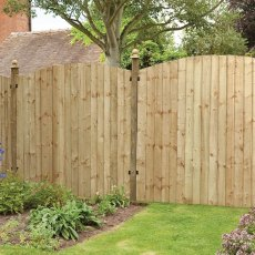 6ft High (1830mm) Forest Pressure Treated Featheredge Contractor Panel - Dome Top - In situ