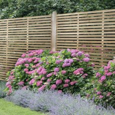 6ft High Forest Slatted Fence Panel - in situ