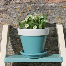 Thorndown Wood Paint 150ml - Slade Green - Lifestyle painted on plant pot