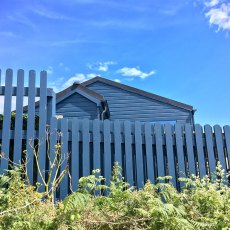 Thorndown Wood Paint - Bishop Blue - Painted on a wooden garden shed and fence