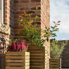 Forest Contemporary Slatted Planter - Set of three - Side view in use