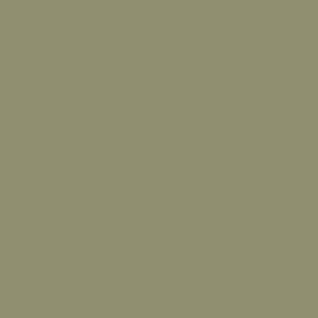 Protek Royal Exterior Paint 5 Litres - Olive Green Colour Sample Swatch