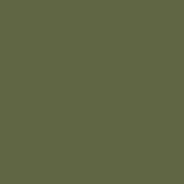 Protek Royal Exterior Paint 5 Litres - Jungle Green Colour Sample Swatch