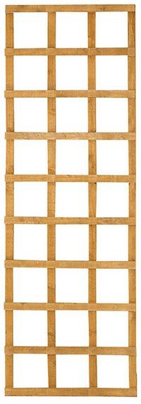 2ft by 6ft (300mm x 1830mm) Forest Heavy Duty Trellis