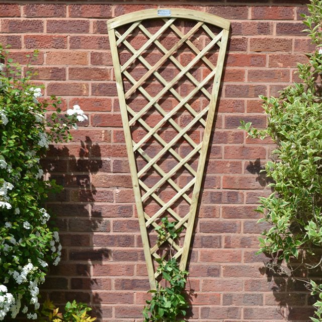 6ft High (1800mm) Forest Hidcote Fan Trellis - Pressure Treated