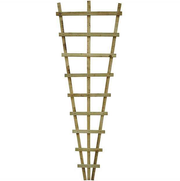 6ft High (1830mm) Malvern Fan Trellis - Pressure Treated