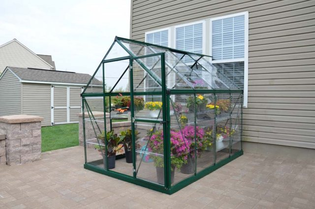 6 x 8 Palram Harmony Greenhouse in Green - in situ