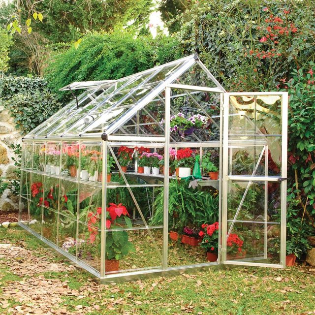 6 x 10 Palram Harmony Greenhouse in Silver