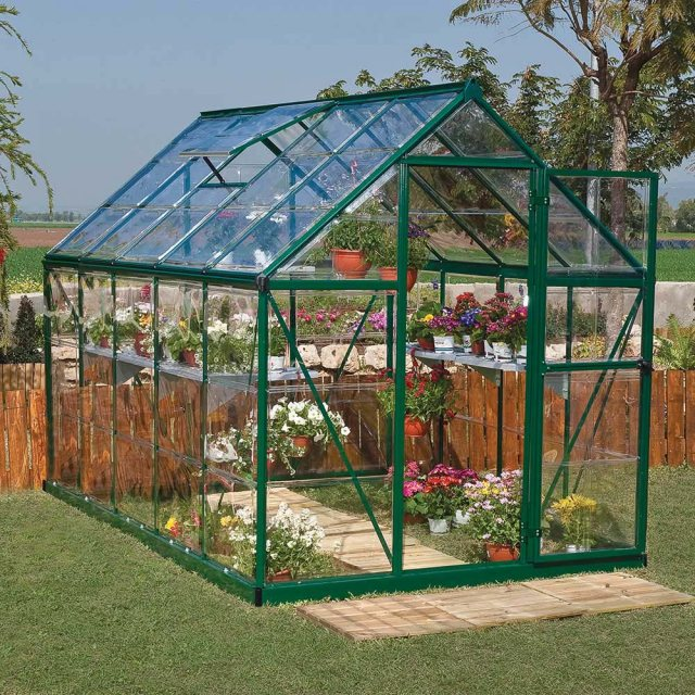 6 x 10 Palram Mythos Greenhouse in Green
