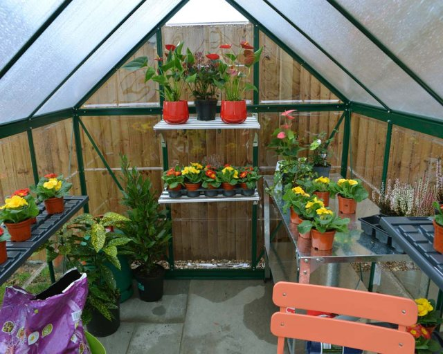 6 x 10 Palram Hybrid Greenhouse in Green - interior with optional shelves