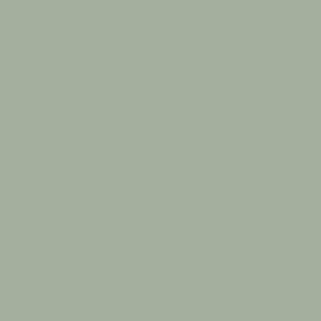 Thorndown Wood Paint 750ml - Goddess Green - Solid swatch