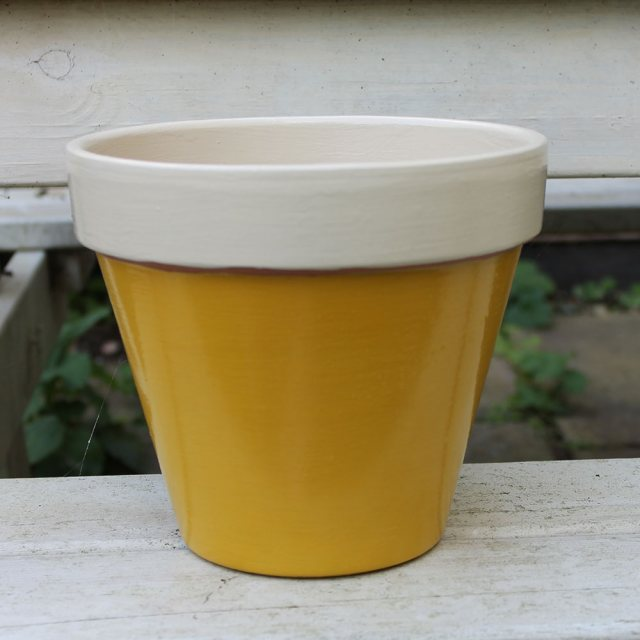 Thorndown Wood Paint 750ml - Mudgley Mustard - Painted on plant pot
